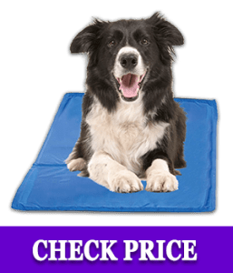 Chillz Cooling Pad For Dogs