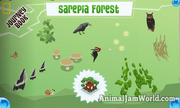sarepia forest journey book