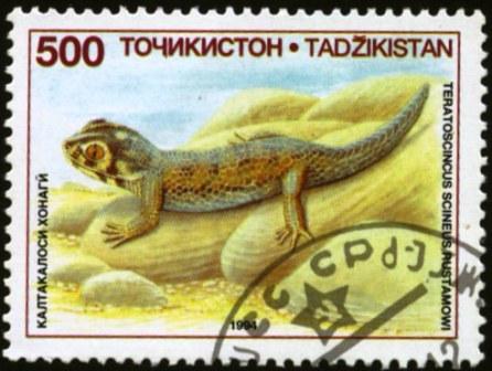 Tajikistan-1