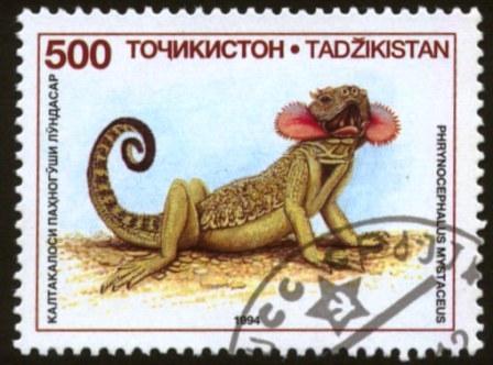 Tajikistan-2