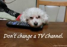 Do not change.