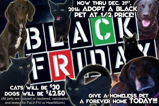 ARC-Black-Friday