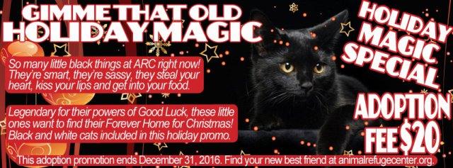 holiday_black_cat