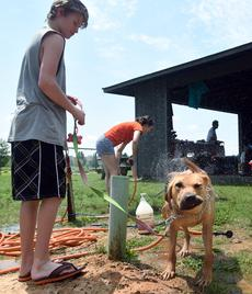 Volunteer Patrick Bergman, 12, holds Gracie's leash as she shakes off after being bathed Saturday during the dog wash and animal blessing held at Freeman Lake Park in Elizabethtown by the Animal Refuge Center of Vine Grove.