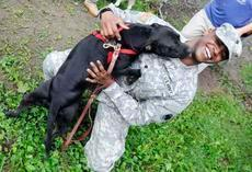 Spec. Tavon O'Connor and Royal get acquainted with each other Thursday morning as O'Connor and other Army Reserve soldiers visit the Animal Refuge Center Inc. near Vine Grove. The soldiers walked dogs and helped with projects during their visit.