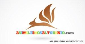 Animal Removal Toronto Affordable wildlife control logo