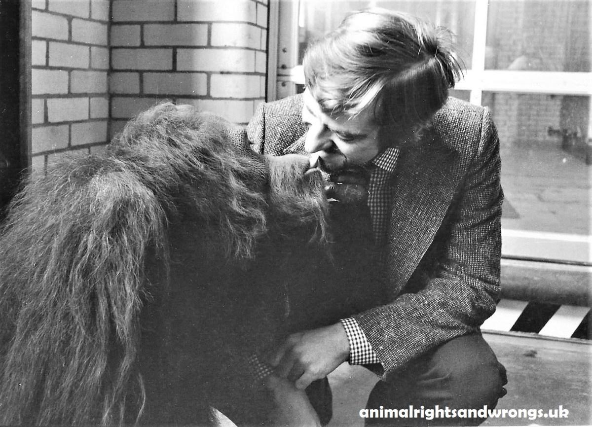 My memorable meeting with C.J. the Orangutan.