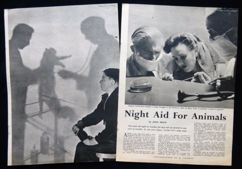 RSPCA Night Clinic 1952 article in Illustrated magazine.