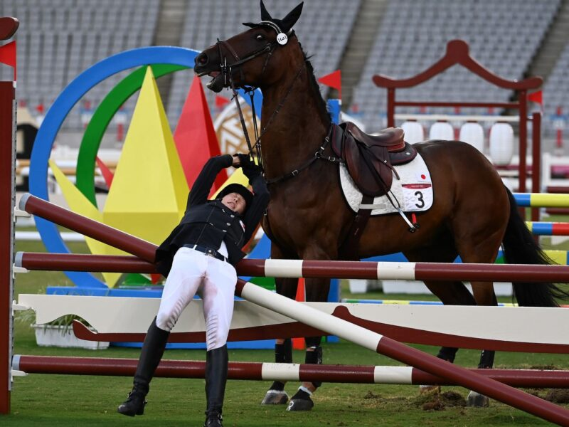 Olympic Games Horse Cruelty No Surprise