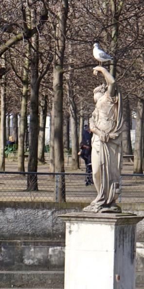Gull on statue