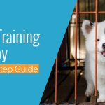 8 Steps To Crate Train A Puppy Fast Complete Guide