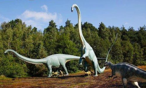 What Did Dinosaurs Eat   Dinosaurs Diet - Animals Time