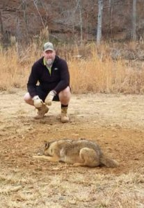 Coyote Trapping