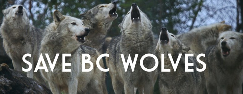 savebcwolves