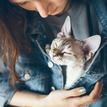 Woman peers lovingly down at a small taupe and cream tabby cat who has their eyes narrowed in bliss. The cat is in the woman's jean jacket and held by her hand.