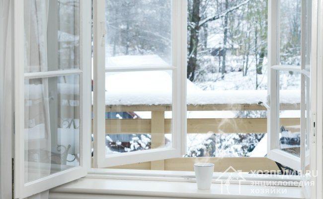 Очистить квартиру от насекомых можно просто открыв на 1-2 дня окна в морозную погоду