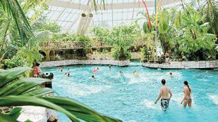 Bij Center Parcs Kun Jij Het Hele Jaar Door Komen Zwemmen In Het Subtropisch Zwemparadijs Constant C Het Hele Jaar Door En Dankzij Het Golfslagbad Kun