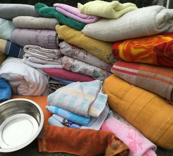 couvertures pour les animaux