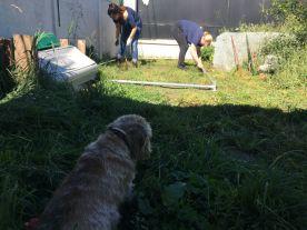 Didi surveille le chantier, début des travaux. Géraldine et Lynda entament les fondations.