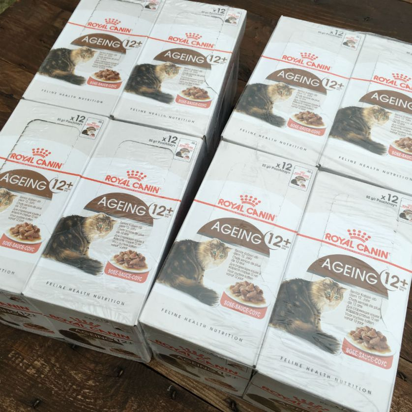 Merci à Wendy qui nous a aussi fait parvenir des pâtées que nos séniors édentés adorent ! MERCI !