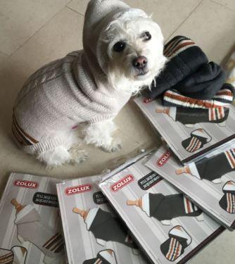 Martine nous a envoyé plein de petits manteaux bien chauds. Sur la photo, notre mannequin Kika montre comment ils sont beaux. Merci Martine !