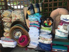 Septembre fut le mois des maxi-dons ! Sylvia est venue déposer toutes ces affaires qu'elle a collectées pour l'association. Merci Sylvia 😘