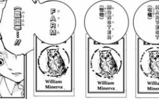 William Minerva