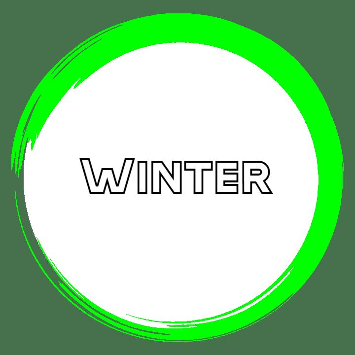 Snapshots - Winter 2021