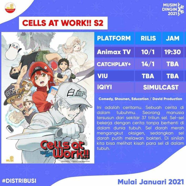 Hataraku Saibou S2 Indonesia