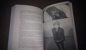 light-novel-2