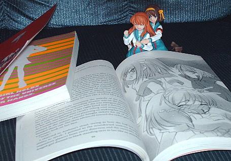 Haruhi Novel no Br