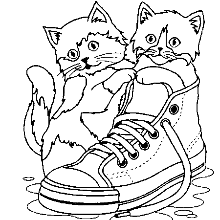 Dessin de chat - Coloriage de chat ...