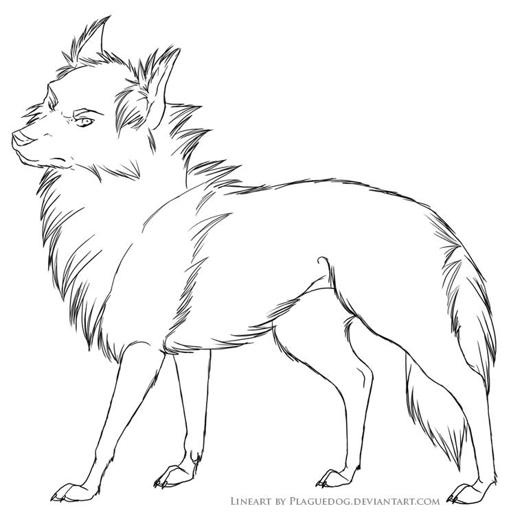 chien19