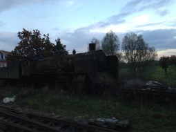 Old Steam Train Moss