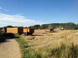 Farm Bedfordshire combine harvester