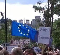 Brexit Protest Banner