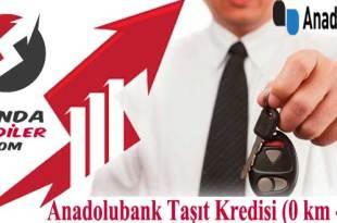 Anadolubank Taşıt