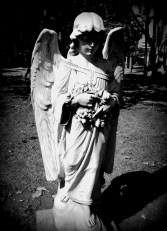 """""""We are each of us angels with only one wing and we can only fly by embracing one another."""" (Luciano de Crescenzo)"""