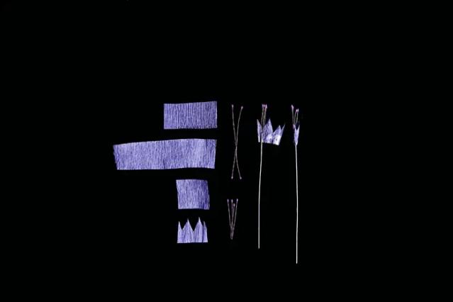 APaperAllium-08