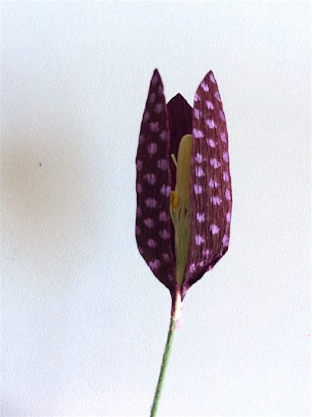 shows gap between petals where fourth petal will be placed