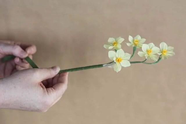 24wrappingbundlenarcissus