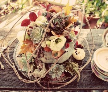 Happy Thanksgiving + Floral Centerpiece: :ove 'n Fresh