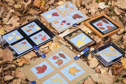2-sunprint-frame