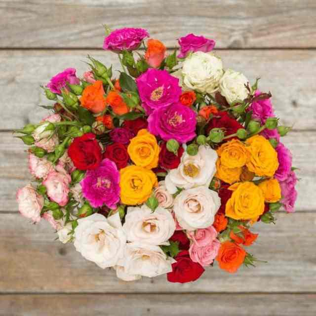 Gifts for Parents Who Have Everything 2019: Bouqs Flower Delivery 2020