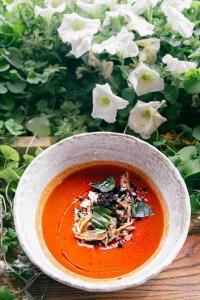delicious cold tomato soup in white bowl