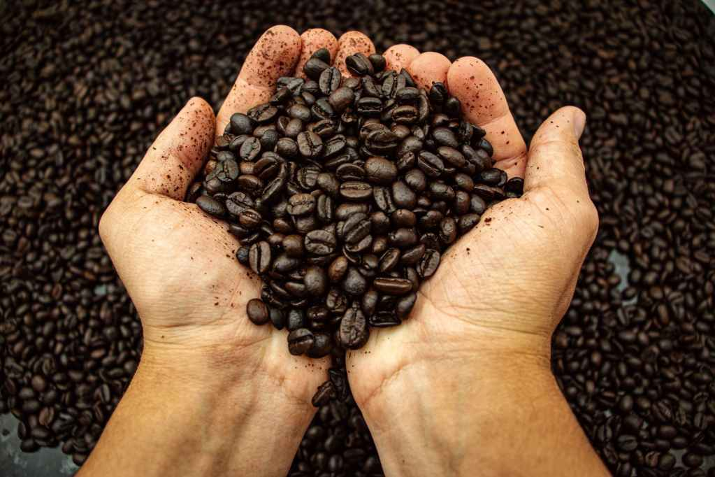 coffee beans on persons hand