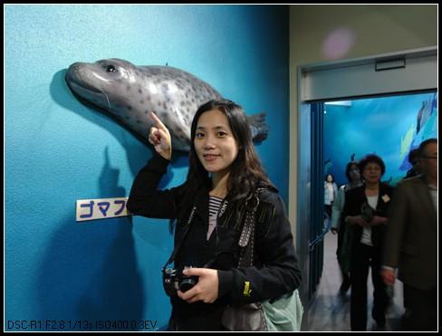 95.11.4北海道餵豬泡湯之旅(22)–旭山動物園(下) + 拉麵村 @愛吃鬼芸芸