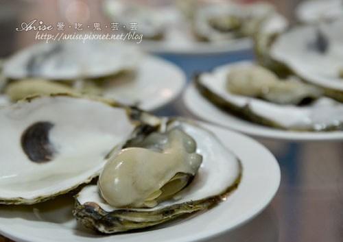 馬蹄蛤012拷貝.jpg