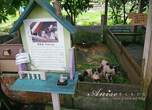 宜農牧場_010.jpg