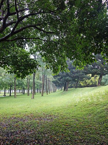大溪埔頂公園_013.jpg